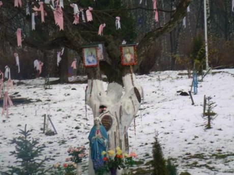 Релігійний куток сектантів посеред парку в Тернополі збільшується (фото)