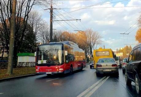 avtobusy-velyki-11-2019-1